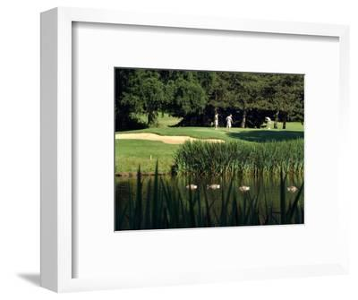 Golfers on the 17th Hole of the Eastmoreland Golf Course, Portland, Oregon, USA