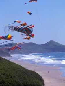 Kites Flying on the Oregon Coast, USA by Janis Miglavs