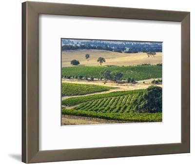 Mountadam Vineyard Winery on High Eden Road, Barossa Valley, Australia
