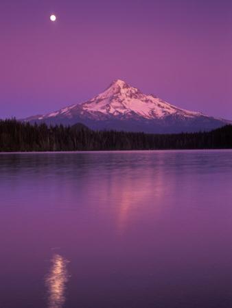Mt Hood in Moonlight, Lost Lake, Oregon Cascades, USA