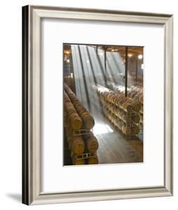 Shafts of Light in Barrel Room of Montevina Winery, Shenandoah Valley, California, USA by Janis Miglavs