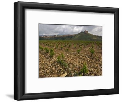 Vineyard in stony soil with San Vicente de la Sonsierra Village, La Rioja, Spain