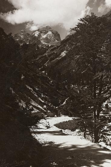 Janolih Mount--Photographic Print