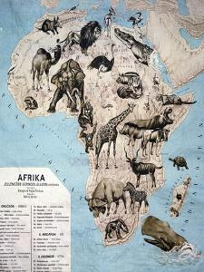 Map of Animals in Africa Sf by Janos Balint