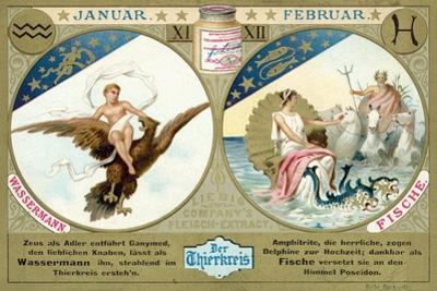 January and February: Aquarius and Pisces
