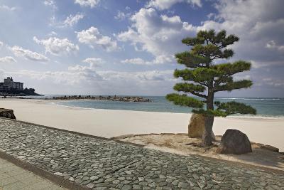 Japan, Shiranahma. Scenic of White Harbor-Jaynes Gallery-Photographic Print