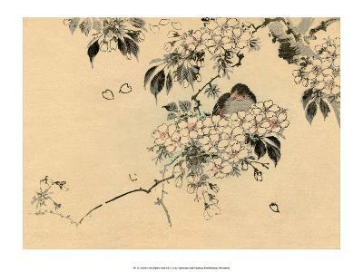 Japanese Bird in Cherry Blossom Nest-Haruna Kinzan-Art Print