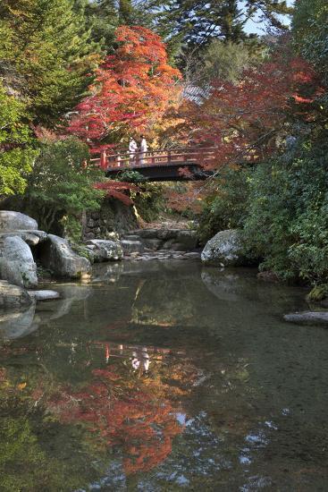 Japanese Bridge in Momijidani Park (Japanese Maple Park) in Autumn-Stuart Black-Photographic Print