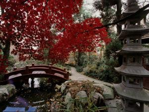 Japanese Garden Hillwood Museum and Gardens, Washington, D.C. USA