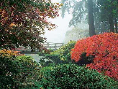 Japanese Garden II-Maureen Love-Photographic Print