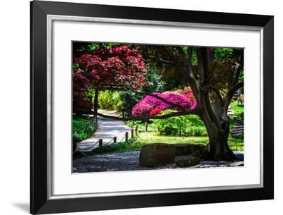 Japanese Garden III-Alan Hausenflock-Framed Photo