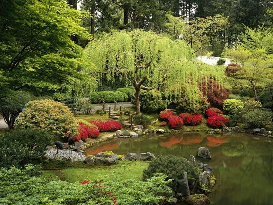 Japanese Garden Pond-Craig Tuttle-Photographic Print