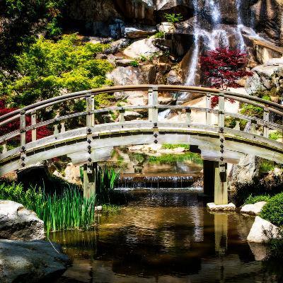 Japanese Garden V-Alan Hausenflock-Photo