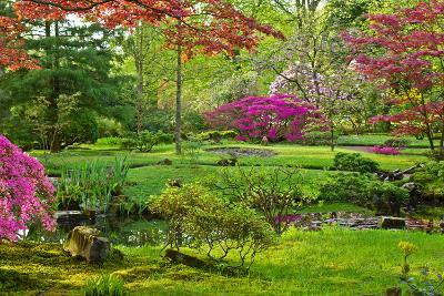 Japanese Garden-neirfy-Photographic Print