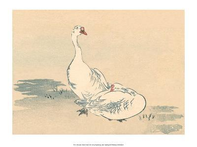 Japanese Geese-Haruna Kinzan-Art Print