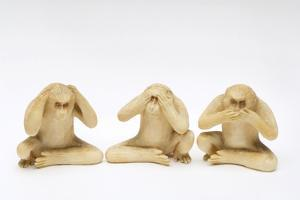 The Three Wise Monkeys by Japanese School