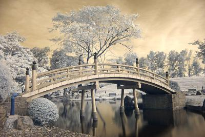 Japanese Style Bridge and Gardens in Singapore-Cheoh Wee Keat-Photographic Print