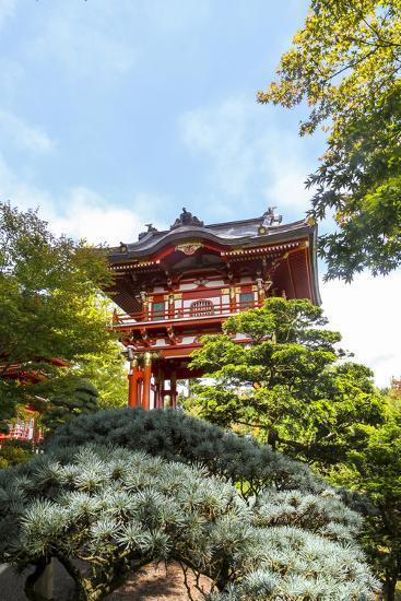 Japanese Tea Garden, Golden Gate Park, San Francisco, California-Susan Pease-Photographic Print