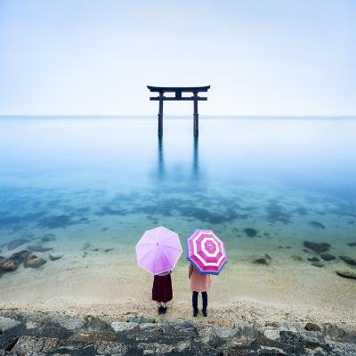 Japanese Torii Gate, Lake Biwa, Takashima, Shiga Prefecture, Japan-Jan Christopher Becke-Premium Photographic Print