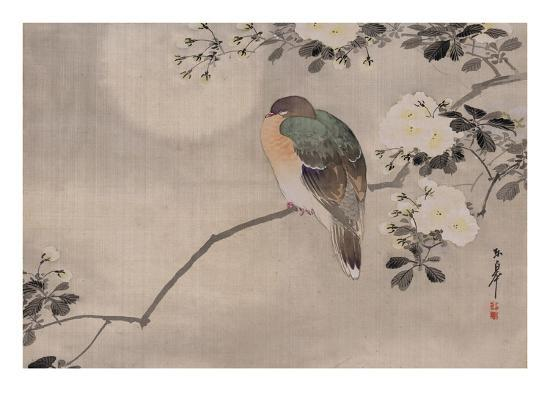Japanese watercolor of bird perched on a branch of a blossoming tree--Giclee Print