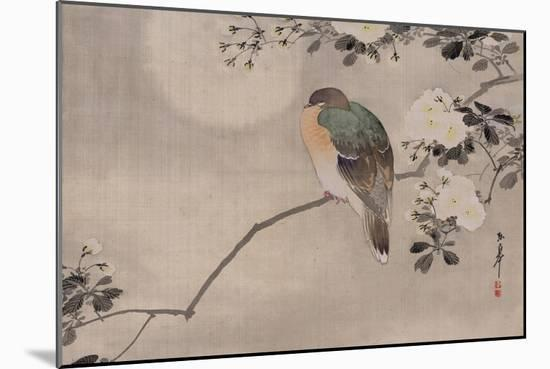 Japanese watercolor of bird perched on a branch of a blossoming tree--Mounted Giclee Print