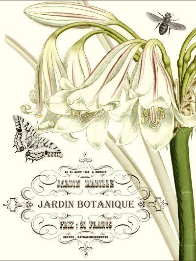 Jardin Botanique I-Vision Studio-Art Print