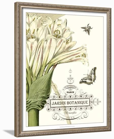 Jardin Botanique II--Framed Art Print