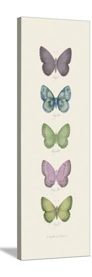 Jardin des Papillons I-Maria Mendez-Stretched Canvas Print