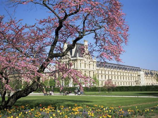 Jardin Des Tuileries And Musee Du Louvre Paris France Photographic