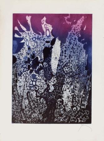 https://imgc.artprintimages.com/img/print/jardin-la-nuit_u-l-f56qbb0.jpg?p=0