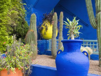 Jardin Majorelle, Marrakech, Morocco-Nico Tondini-Photographic Print