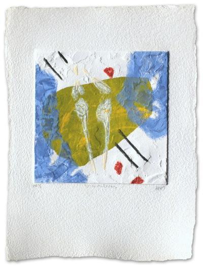Jardins-Bernard Alligand-Limited Edition