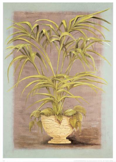 Jarrones Plantas II-L^ Romero-Art Print