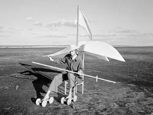 Longing For Wind 2, 2015 by Jaschi Klein