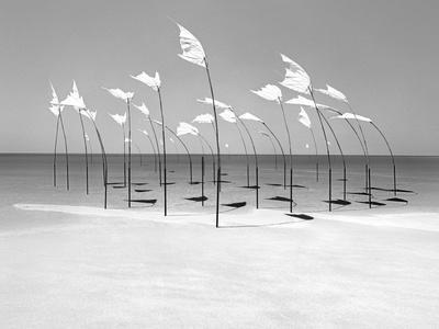 Wind-Installation I, 2015