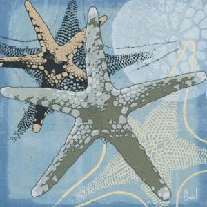 Ocean's Delight II by Jason Basil