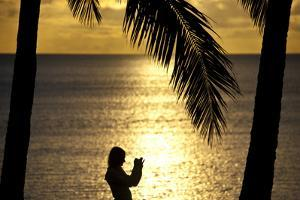 A Tourist Photographs an Idyllic Tropical Sunset Beneath Palm Trees by Jason Edwards