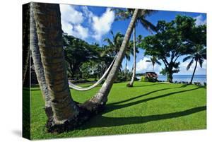 Hammocks Hang Lazily Between Garden Palm Trees Overlooking the Sea by Jason Edwards