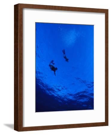 Snorklers Diving into a Deep Blue Tropical Ocean