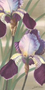 Asian Iris II by Jason Higby