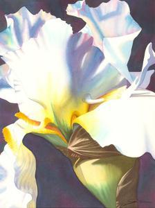 Blue Iris I by Jason Higby