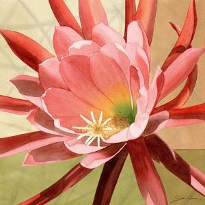 Desert Bloom I by Jason Higby
