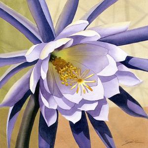 Desert Bloom II by Jason Higby