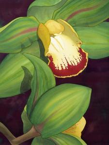 Lime Orchid II by Jason Higby