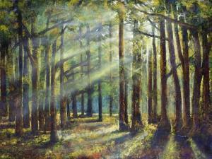 Sunlight Peeking by Jason Jarava