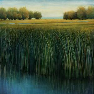 Tall Grass by Jason Jarava