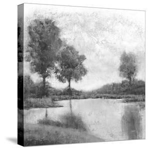 Trees upon the Water III by Jason Jarava