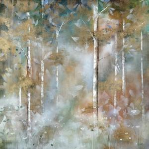 Valley of Mist by Jason Jarava