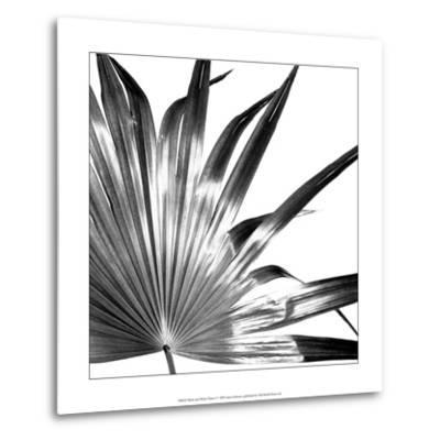 Black and White Palms I