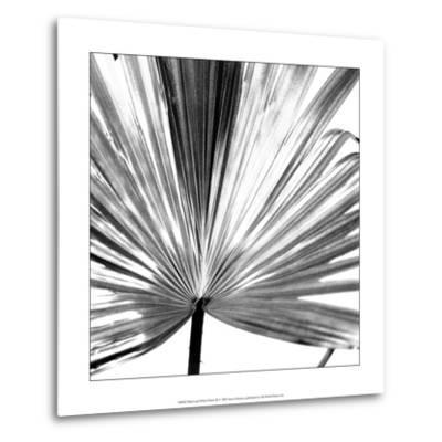 Black and White Palms III